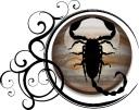 scorpio-jupiter